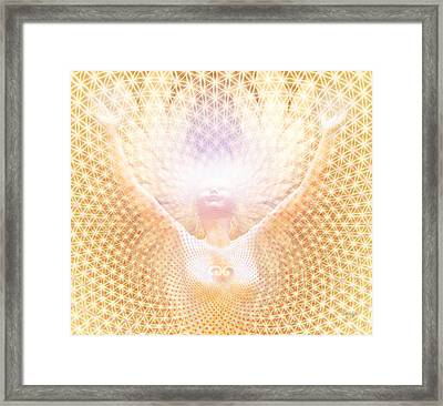 Fabric Of Life Framed Print by Robby Donaghey