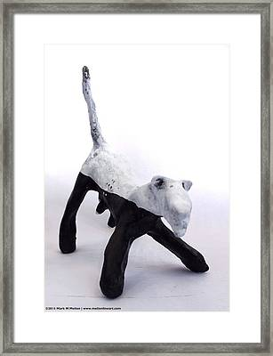 Fabulas Canis Black And White Female  Framed Print by Mark M  Mellon