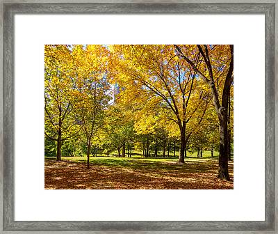 Framed Print featuring the photograph Fabulous Fall Foliage by David Coblitz