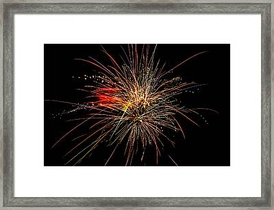 Fabulous Fourth Framed Print by Shirley Tinkham