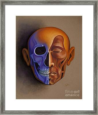 Face Anatomy Framed Print