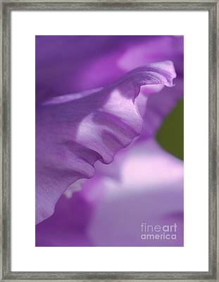 Face In A Glad  Framed Print