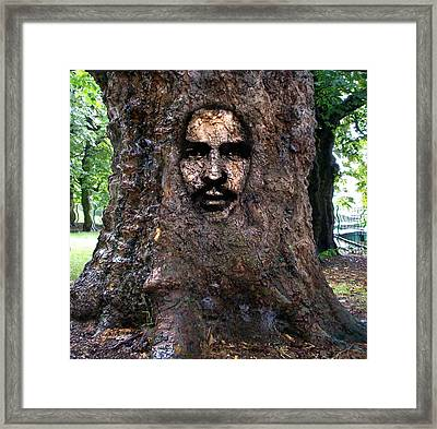 Framed Print featuring the digital art Face In A Tree by Mary M Collins