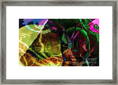 Face In The Rock Moon Glow And Night Vision Framed Print by Elizabeth McTaggart