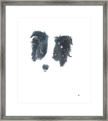 Face In The Snow Framed Print by Aliceann Carlton