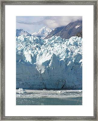 Face Of A Giant In Alaska Framed Print