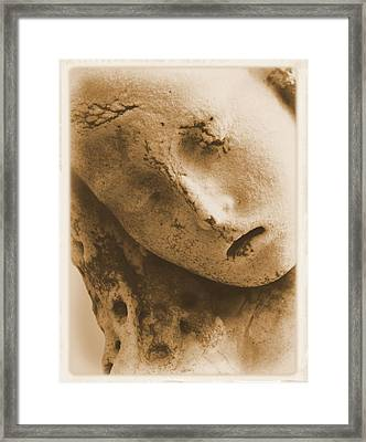 Framed Print featuring the photograph Face Of An Angel by Nadalyn Larsen