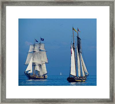 Face-off Framed Print by Gregory Israelson