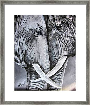 Face To Face Framed Print by Maris Sherwood