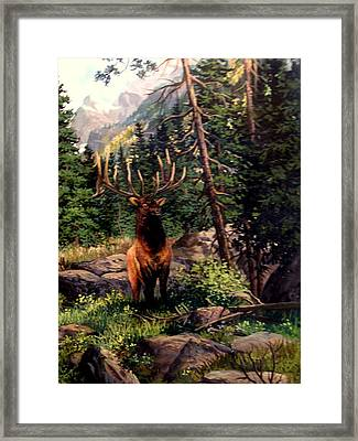 Face To Face. Framed Print by W  Scott Fenton