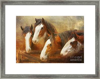 Faces Of Four Framed Print