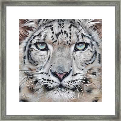 Faces Of The Wild - Snow Leopard Framed Print