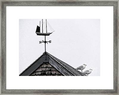 Facing South Framed Print