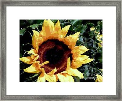 Framed Print featuring the photograph Facing The Sun by Sally Simon