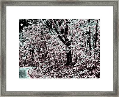 Facing The Unknown Framed Print by Will Borden