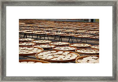 Factory For Sun Dried Noodles In Taiwan Framed Print by Yali Shi