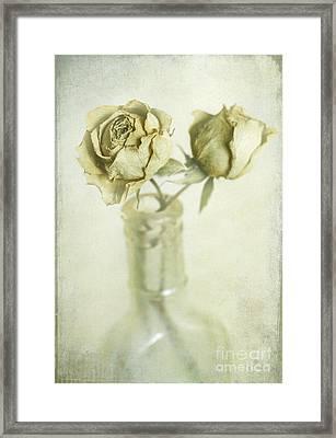 Faded Dreams Framed Print