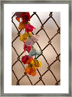 Faded Dreams Framed Print by Peter Tellone