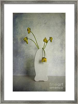 Withered Flowers Framed Print