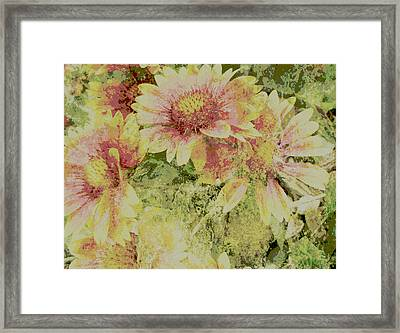Faded Love Abstract Floral Art Framed Print by Ann Powell