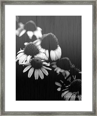 Faded Memory Framed Print by Amanda Barcon