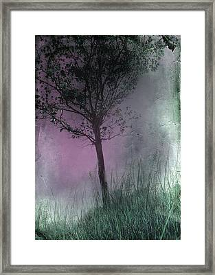 Faded Pink Sky Framed Print