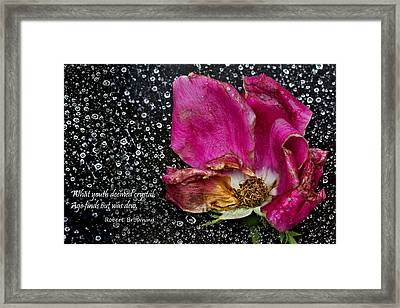 Faded Rose - Youth And Age Framed Print