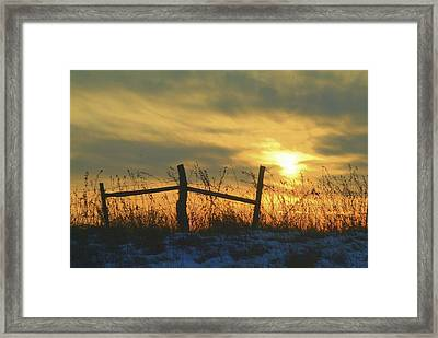 Fading Framed Print by Al  Swasey