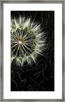 Fading Away Framed Print by Marianna Mills