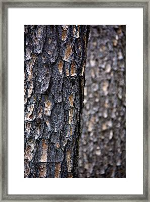 Fading Out Framed Print by Kathi Isserman