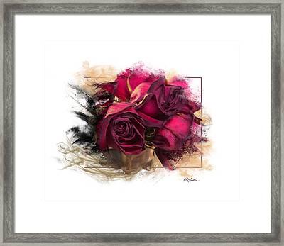 Fading Roses Framed Print