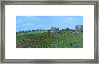 Fading Tobacco Barns Framed Print