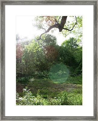 Fae Framed Print