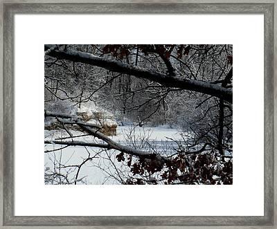 Faery Swamp Framed Print