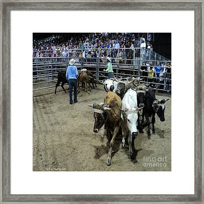 Fair Rodeo Framed Print by Megan Dirsa-DuBois
