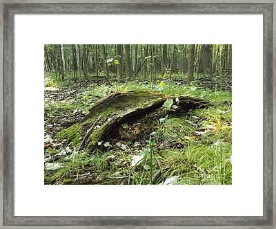 Fairy Bridge  Framed Print