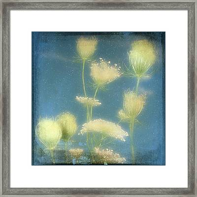 Fairy Dusted Framed Print by Gothicrow Images