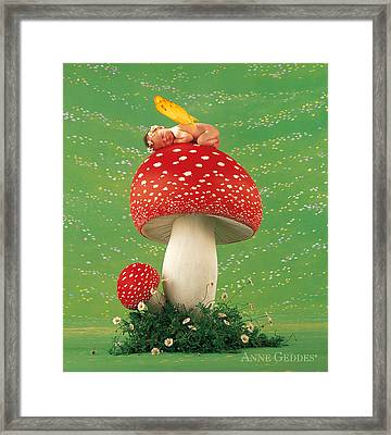 Fairy On Toadstool Framed Print by Anne Geddes