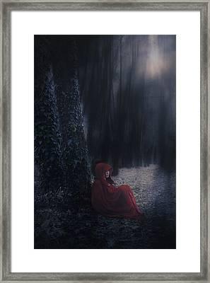 Fairy Tale Framed Print by Joana Kruse