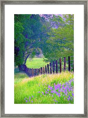 Fairy Tale Meadow With Lupines Framed Print