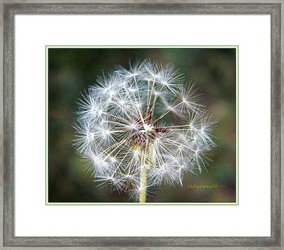 Fairy Umbrellas Framed Print by Kathy Barney