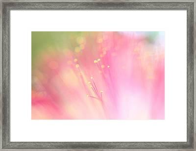 Fairyland Framed Print by Leapdaybride