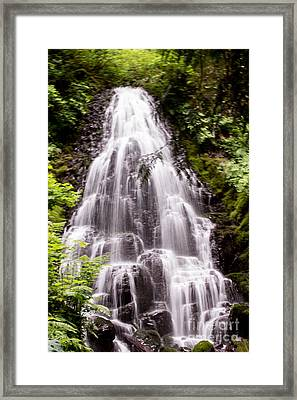 Framed Print featuring the photograph Fairy's Playground by Suzanne Luft