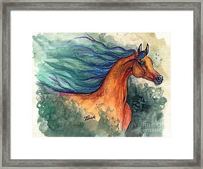 Fairytale Bay Arabian Horse 28 10 2013 Framed Print by Angel  Tarantella