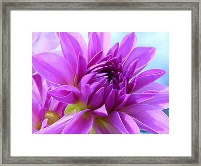 Fairytale Framed Print by Connie Handscomb