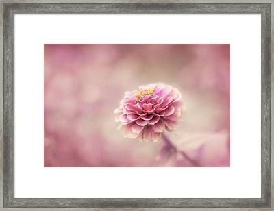 Fairytale Ending Framed Print by Amy Tyler