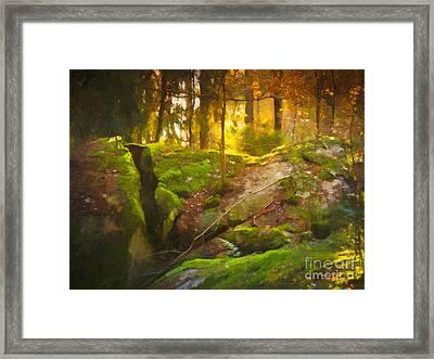 Fairytale Forest Framed Print by Lutz Baar