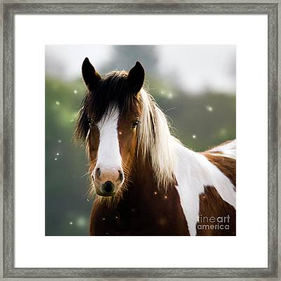 Fairytale Pony Framed Print by Angel  Tarantella