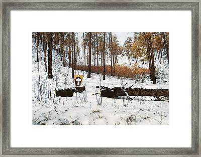 Faith In The Wilderness Framed Print by HW Kateley