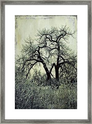 Faith Framed Print by Leanna Lomanski